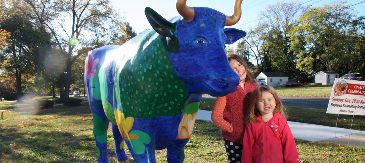Oxen Bidding Closes, Some Local Schools Are Highest Bidders