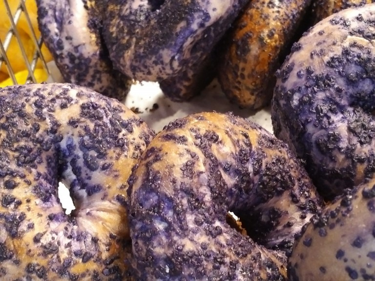 The Taste Chase: Bagels and Doughnuts and Bagels, oh my!! (Part 2)