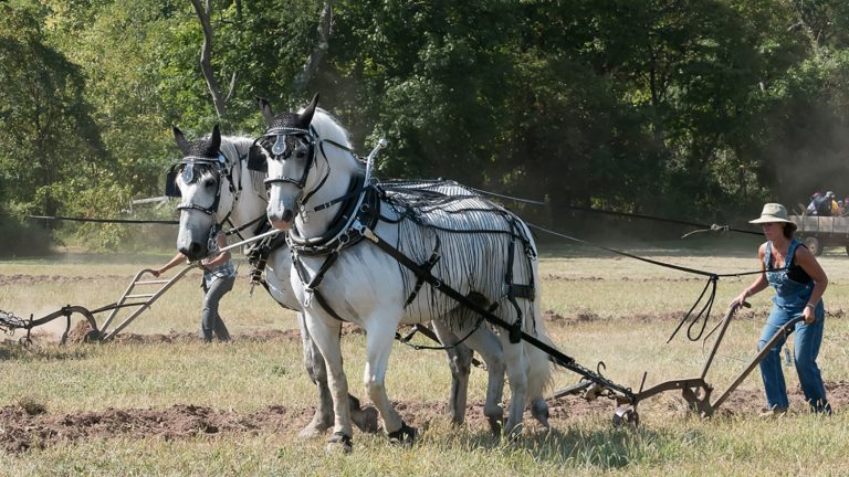 Howell Living History Farm to Hold Annual Plowing Match
