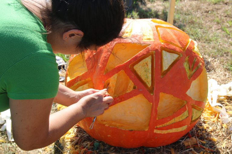 aMAZing pumpkins on display at Howell Living History Farm Corn Maze