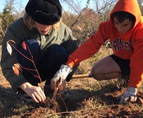 Sourland Superheroes Defeat Invasive Plants