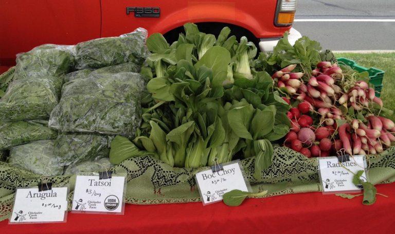 Pennington Farmers Market Opening for the Season