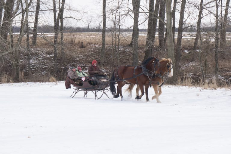 Howell Farm to Offer Valentine Rides and Activities