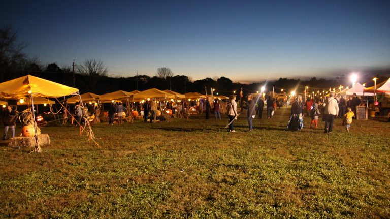 Hopewell Valley Arts Council Celebrates Successful Fourth Annual Amazing Pumpkin Carve