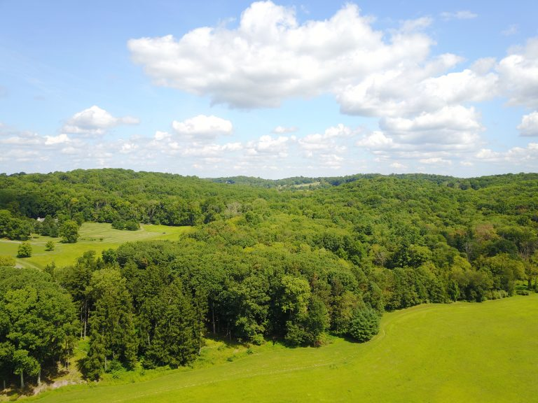 Woosamona Ridge in Pennington, D&R Greenway 300th Preserved Property