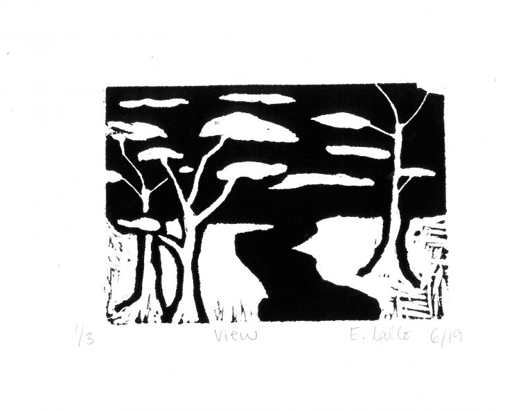 Nature in Black and White: Stuart Students' Lino-Cuts re-create Emergence of Spring
